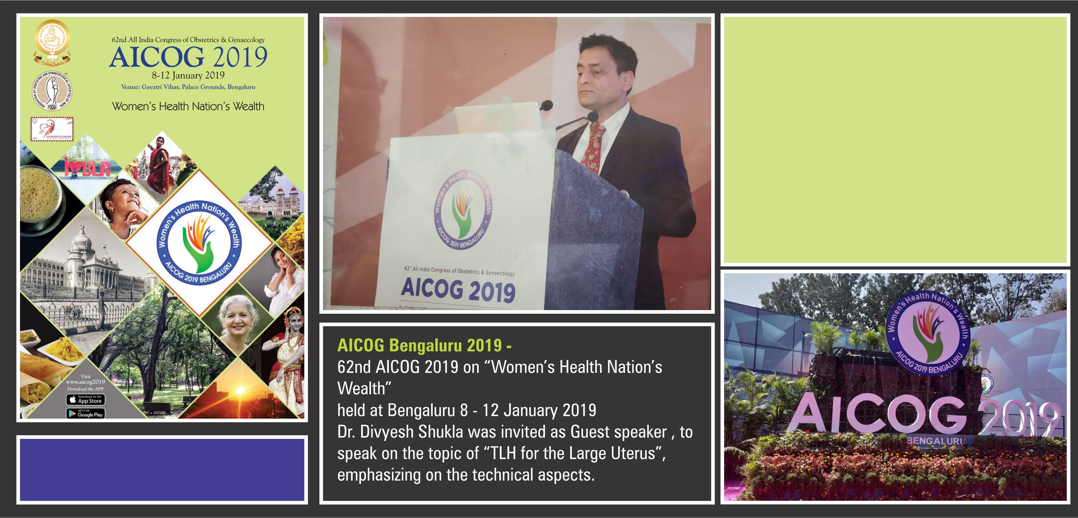 AICOG2019-10-11Jan-Bengaluru-DS